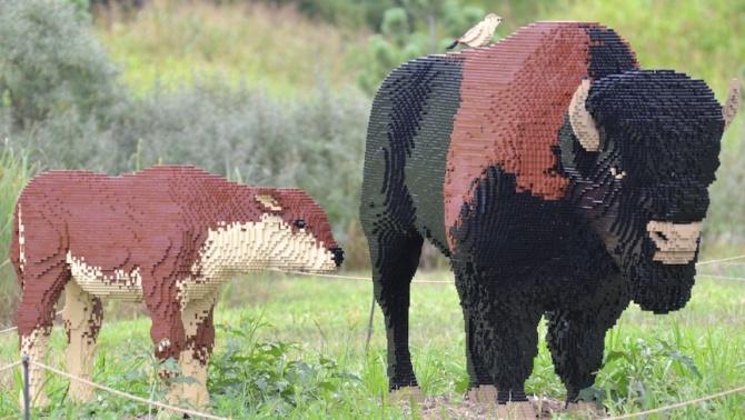 lego-bison